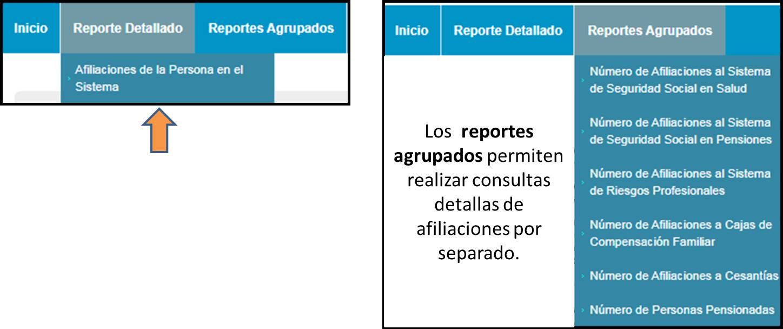 Reporte detallado RUAF